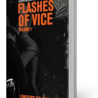 BOOK REVIEW: FLASHES OF VICE VOL I by VINCENT DE PAUL
